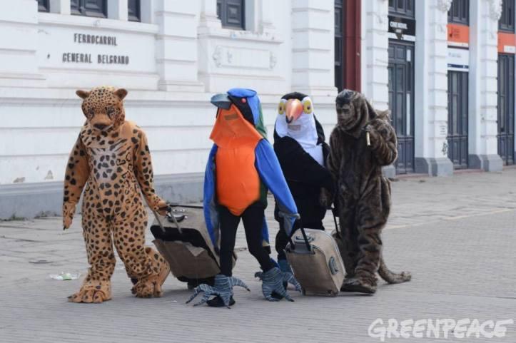 Se quedan sin casa y se van... ¡desalojados por las petroleras! (Crédito foto: Greenpeace)